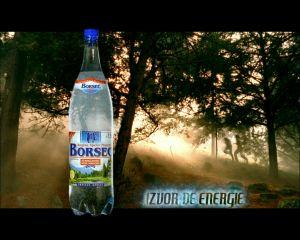 Regie Stapanul Inelelor pentru Borsec