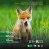 #5Rusia, file din natura. Expozitie temporara de fotografie despre biodiversitate la Antipa, in colaborare cu Societatea Geografica Rusa.