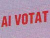 Felix Tataru (GMP) a votat cu PD-L, Radu Florescu (Saatchi&Saatchi) cu 2 candidati PNL, iar Sorin Predescu (ex The Group, Grey ), cu PSD+PC