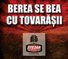"Tovarasi, Stejar cauta barbatul ""strong cu o campanie de 100.000 de euro"