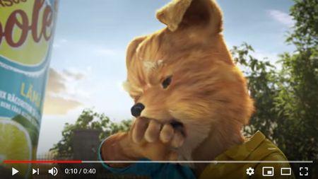 """Spotul Ursus Cooler """"Pisicaine"""" nu se va mai difuza. Reclama se opreste in mediul audiovizual."""