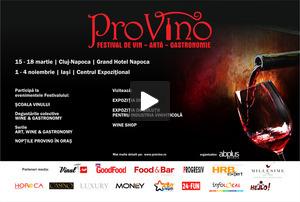 Festivalul de Vin, Arta, Gastronomie PROVINO