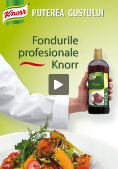 Brosura Fonduri Knorr